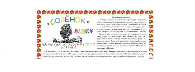 sovenok-3-19
