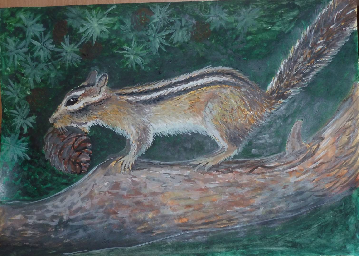 Бурундук. Рисунок Вероники Селивановой.