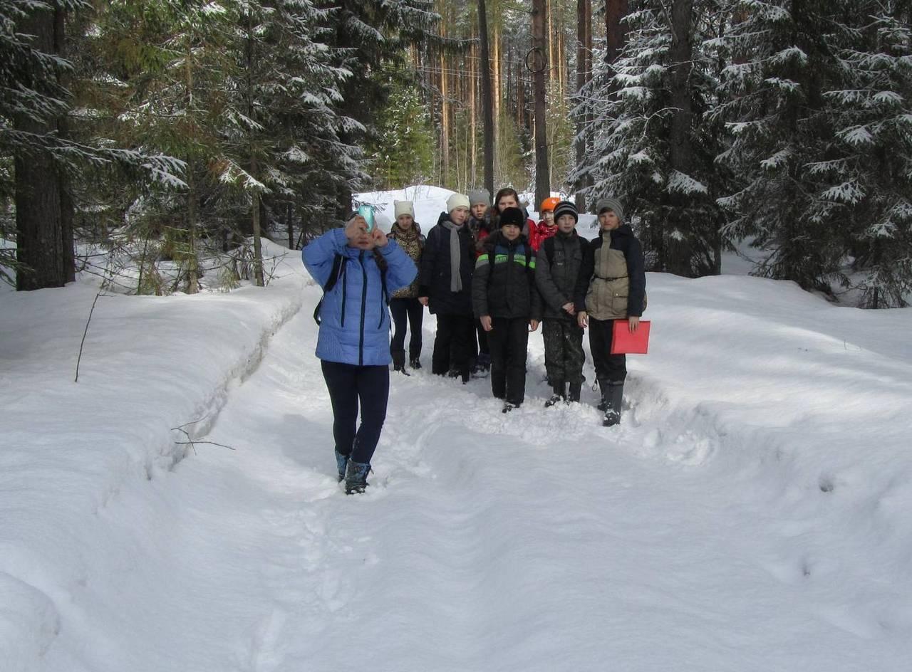 Весеннее путешествие в зимний лес