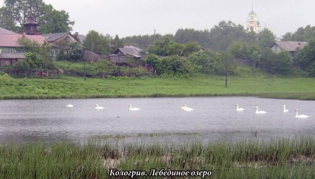 Kologriv-185