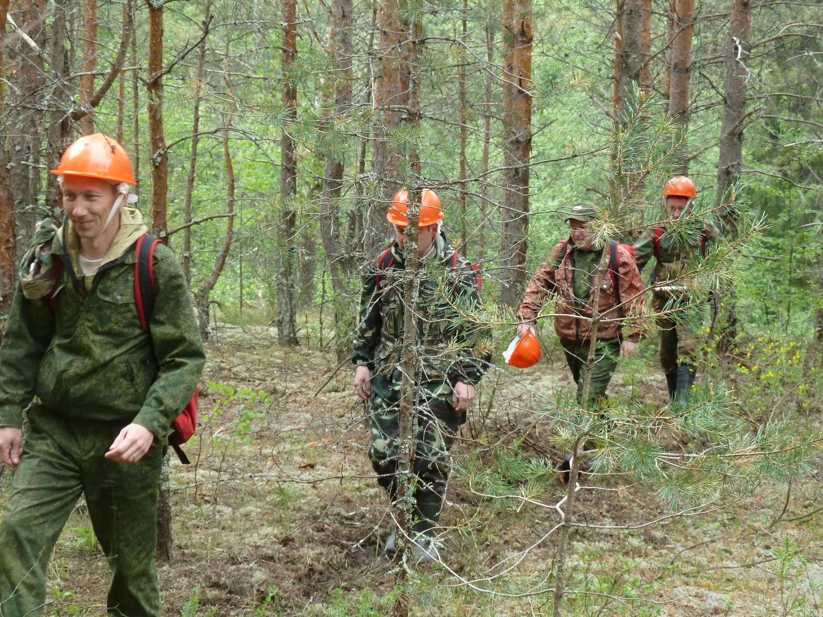 учения по тушению лесных пожаров